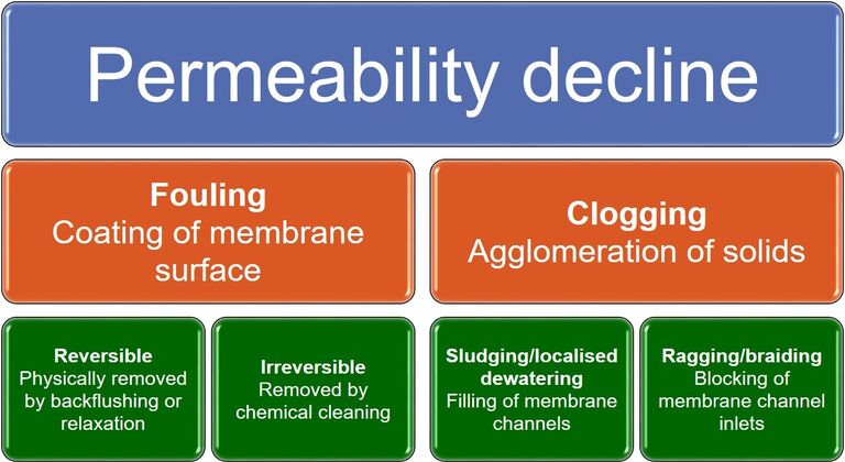 Definitions of fouling and clogging