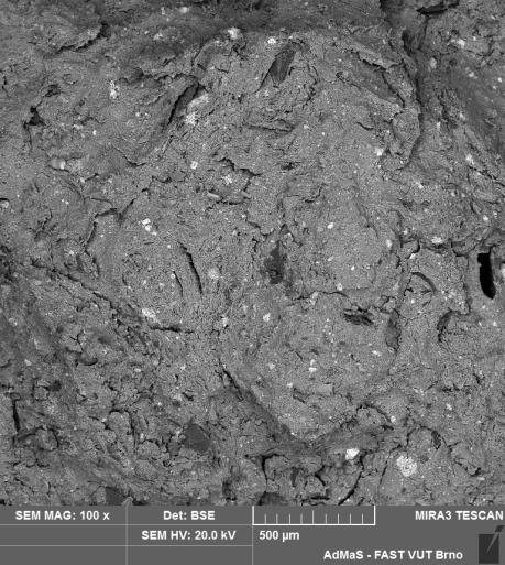 Figure 3.  SEM of biochar, indicating white deposits