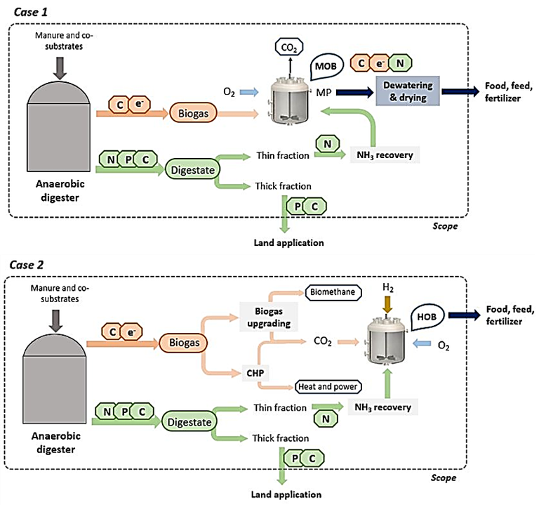 Figure 5.  Anaerobic digestion configured for C and N capture for microbial protein production (Verbeeck et al, 2020)