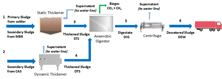 Fig. 2.  Scheme of Trento (Italy) municipal WWTP identifying four sludge samples