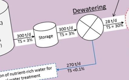 Header image for Thermophilic high-solid digestion of dewatered digested sewage sludge