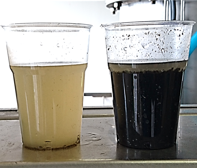 Fig. 4.  SP filtrate and acidified sludge samples