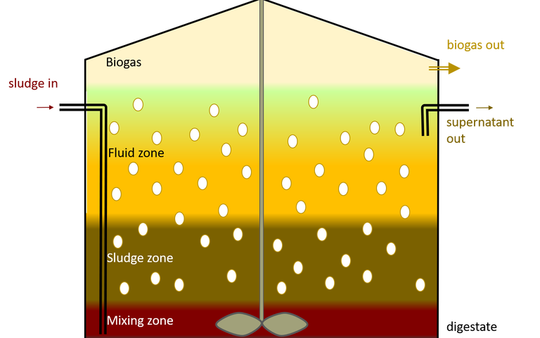 Image of anaerobic digester, showing five zones: the treated waste solids, mixing zone, sludge zone, fluid zone and biogas. The reactor is stirred and fed with the sludge. There are three outlet streams: the solid digestate, supernatant liquid and biogas
