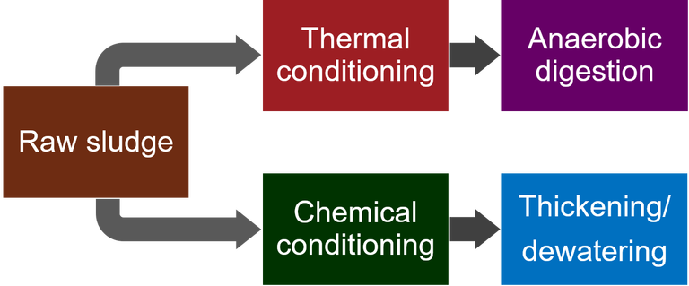 Processes for chemical conditioning and thermal conditioning of sewage sludge upstream of thickening/dewatering and anaerobic digestion