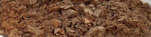 Image of dewatered sludge