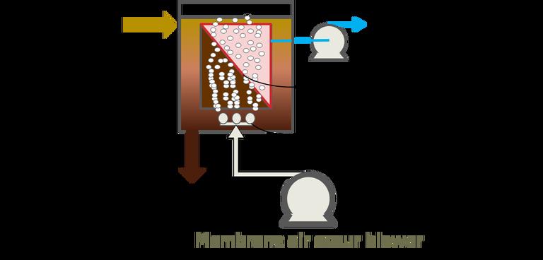 Membrane thickening sewage sludge