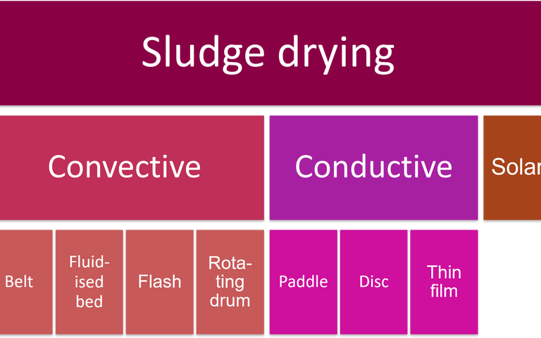 Hierarchy of sludge drying processes, showing convective and conductive dryers and including belt, fluidised bed, flash, rotating drum, paddle, disc and thin film dryers.