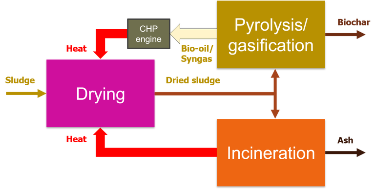 Schematic showing integration of sludge drying with the downstream operations of anaerobic digestion and incineration, where the latent heat from the downstream processes is used to heat the dryer.