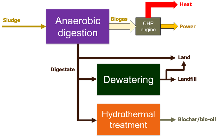 Flowsheet showing how anaerobic integrates with downstream processes of dewatering and hydrothermal treatment of the digestate stream, along with combined heat and power (CHP) for the biogas, for resource recovery