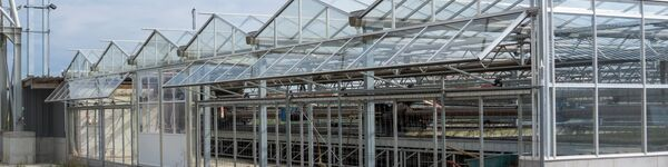 Solar dryer, showing glass greenhouse structure