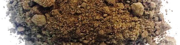 Brown sewage sludge powder with coarser lumps