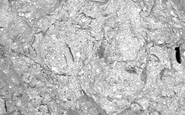 SEM image of biochar