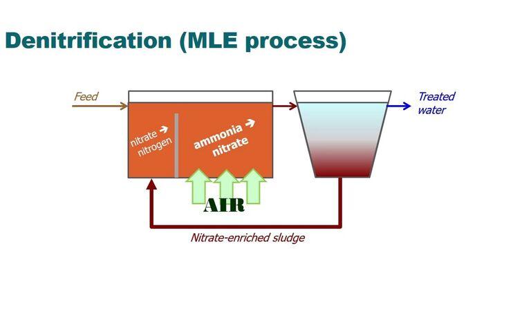 Biological nutrient removal via conventional denitrification/nitrification