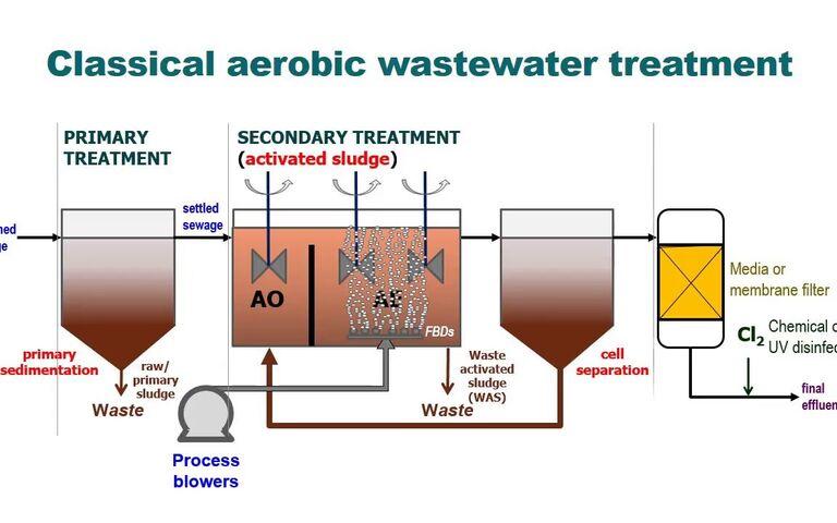Conventional activated sludge (CAS) process
